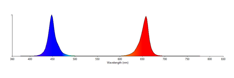 What are full spectrum LED grow lights?   Waveform Lighting