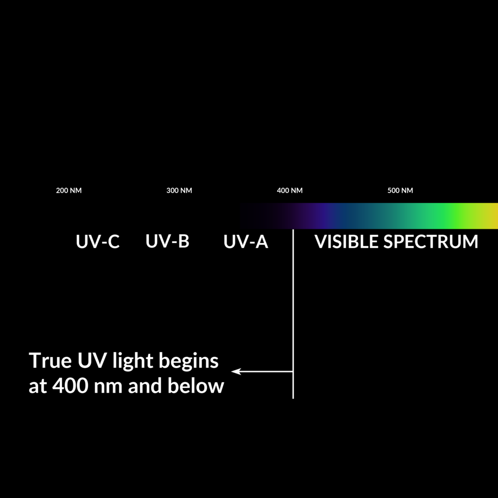 Everything You Need to Know About UV Flashlights | Waveform